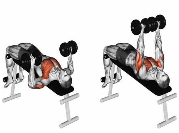 Bài tập cơ ngực Decline Dumbbell Bench Press