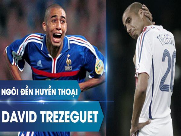 Tiểu sử David Trezeguet – Thông tin sự nghiệp cầu thủ của Trezeguet